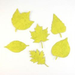 Pack de 6 feuilles vert anis en papier expansé