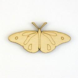 Papillon-N4