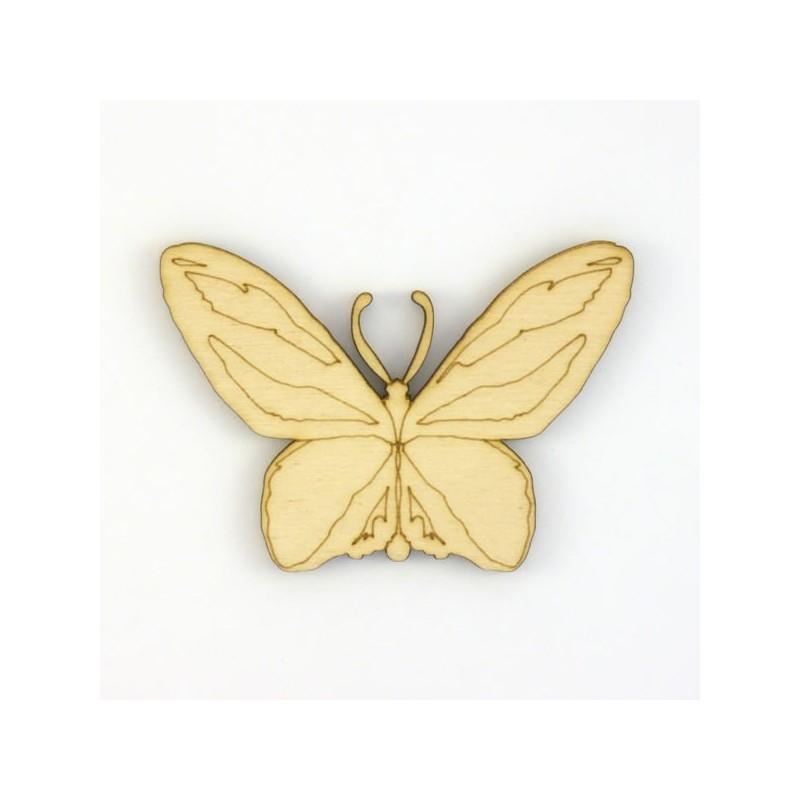 Papillon-N6